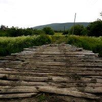 Дорога через мост в Монастырь... :: Дмитрий Петренко