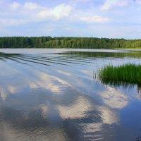 Пора прибиться к берегу... :: Нэля Лысенко