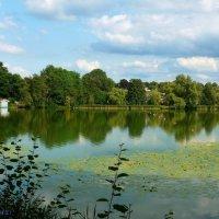Домик у озера :: Nina Yudicheva