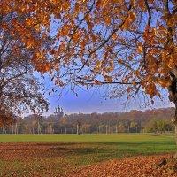 Осень на Лугу :: Евгений