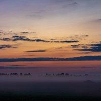 Рассвет и утренний  туман :: Serge Serebryakov