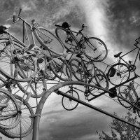 Тур де Франс.... :: Elena Ророva