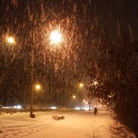 Золотой снегопад :: Анатолий Володин
