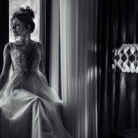 Красота в ЧБ :: Константин Воронов