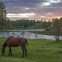 Тихий вечер в деревне :: Елена Елена