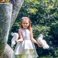 Будьте же счастливы милые голуби...))) :: Владимир Деньгуб