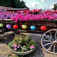 Всем друзьям.и гостям  странички  .желаю  доброго  .летнего  дня  ! :: backareva.irina Бакарева