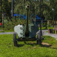 пушки молчат :: Петр Беляков