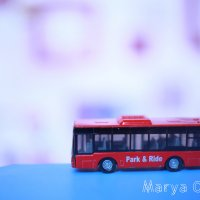 Автобус :: Мария Орлова
