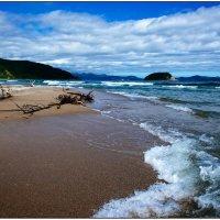 На берегу Японского моря :: Sofia Rakitskaia