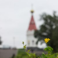 . :: Александр Создаев
