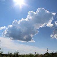 Облака :: Ольга Опарина