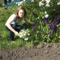 цветы :: гузель хасанова