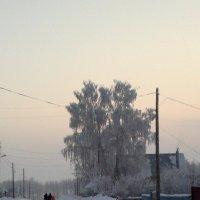 зима :: гузель хасанова