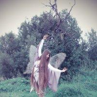 Танец бабочки :: Татьяна Ширякова