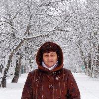 Зима.. :: Елена Самофал