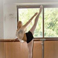 балерина 3 :: Vitaliy Mytnik