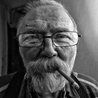 портрет шириком) :: ВЛАДИМИР