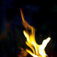 Пламя :: Наталья Дороднова
