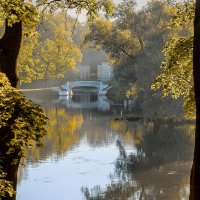 ... осенью дышало... :: Сергей Долженко