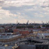 Крыши Питера :: Dmitry Krasitsky
