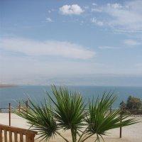 Мертвое море :: Елена Шидловская