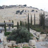 Иерусалим :: Елена Шидловская