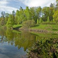 The Lake in Trostianetskyi Park :: Roman Ilnytskyi