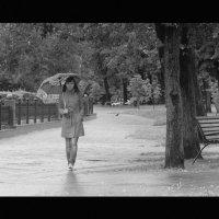 Прогулка под дождём :: Umka Bear