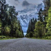 Дорога в даль :: Андрей Дыдыкин