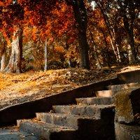 Осенняя пора... :: Денис Ведь