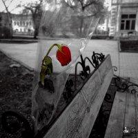 Одиночество :: Сергей Хисматуллин