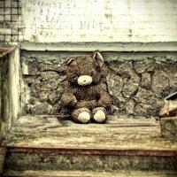 teddy ... :: Роман Шершнев
