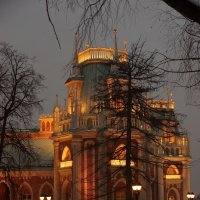 царицыно,фрагмент дворца :: Александр Шурпаков