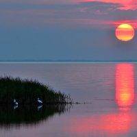 Природа делает акцент на ... :: Денис Гадасюк