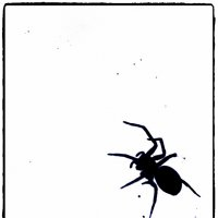 spider :: Natalya секрет