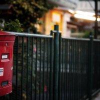 send me the letter :: Катя Рыжкова