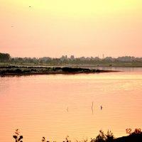 Розовый закат :: Алекс Ка
