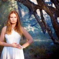 Из леса....... :: Света Солнцева