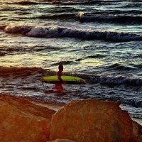 Море зовет! :: Alex S.