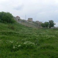 вид на крепость :: Елена Иванова