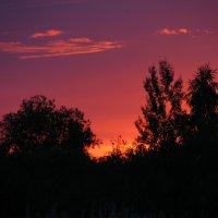 закат :: Анна Бердникова