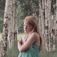 В объятиях берёз :: Татьяна Ширякова