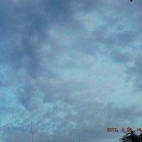 небо :: Дмитрий Бердник