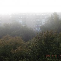 туман :: Дмитрий Бердник