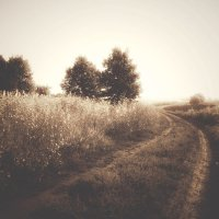 Дорога в осень :: Руслан