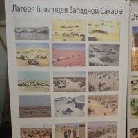 На выставке народа Сахарави из Западной Сахары :: Galina194701