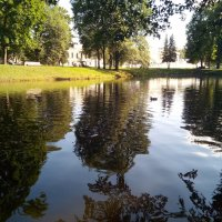 Окрестности Ямбурга. :: Андрей Иванов