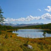 Озеро на перевале. :: Валерий Медведев