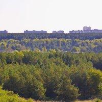 За полосами леса.. :: Юрий Стародубцев